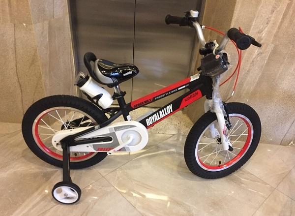 Xe đạp Royal Baby kiểu dáng thể thao