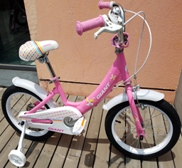 xe-dap-tre-em-giant-Darb-161-pink